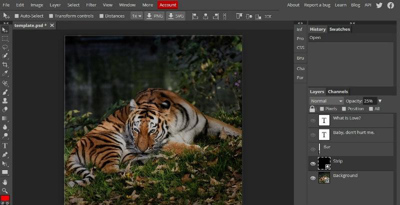 programi za obradu fotografija - photopea