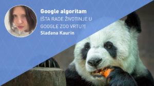 GOOGLE-ALGORITAM-moja-digitalna-akademija-sladjana-kaurin